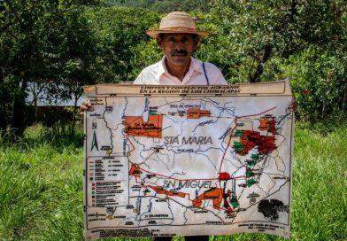 En la Mira / Los Chimalapas; 9 años en el archivo de la SCJN con 50 mil hectáreas devastadas